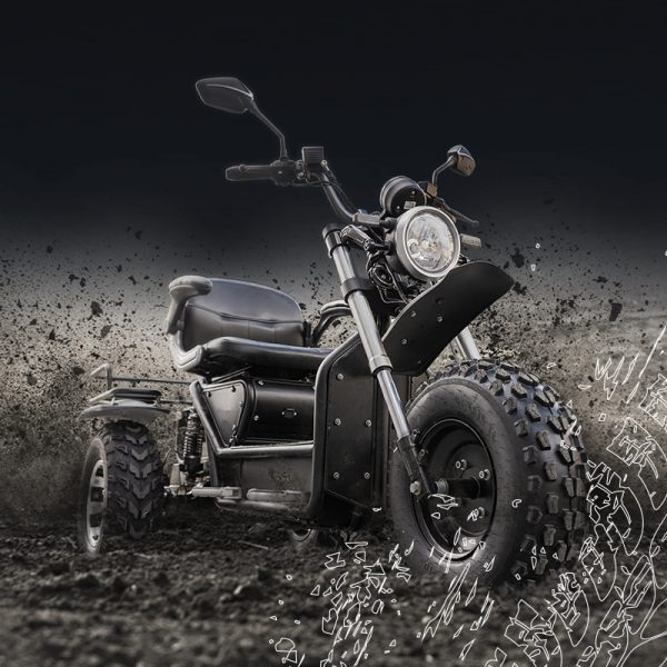 Invader off- road mobility scooter